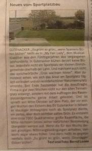 Ausriss aus der Lahnpost vom 31.10.2014